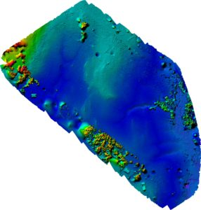Colored Drone Elevation map